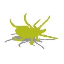 Mosquito Squad kills ticks dead